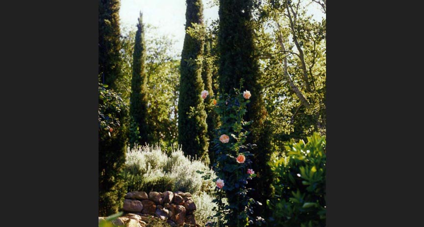 Montecito Specialty Landscaping