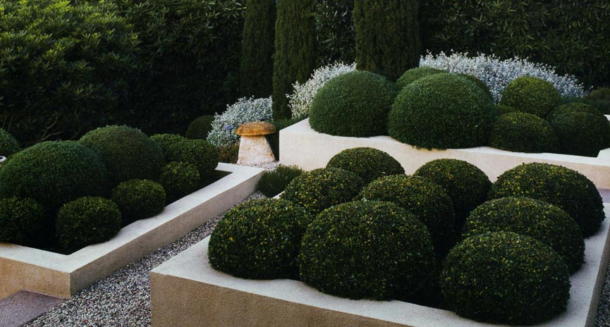 Montecito Landscaping contractor