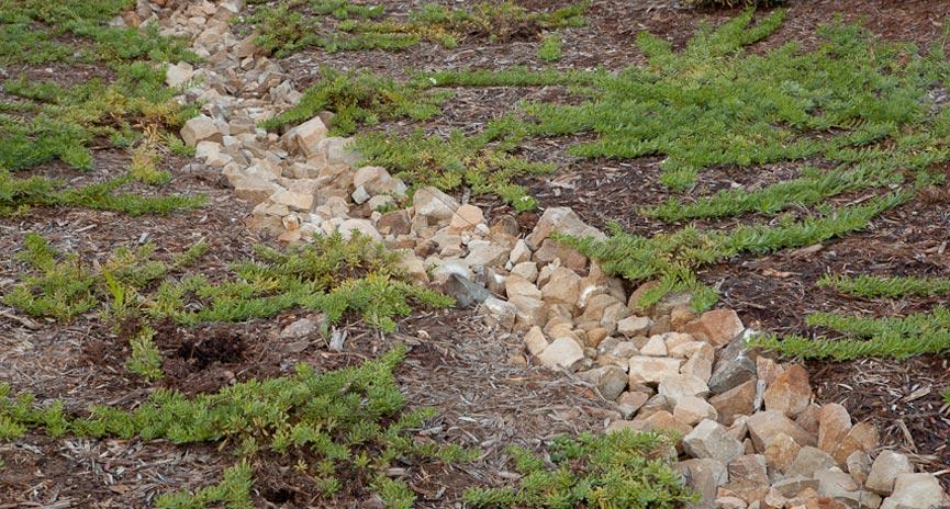 Santa Barbara Landscape Drainge contractor