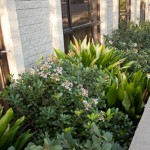 Santa Barbara Commercial Landscaping Services