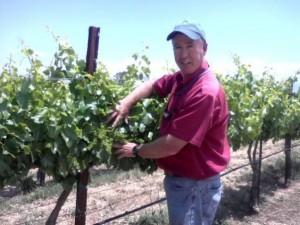 Bruce Koehler - Santa Ynez Vineyard Manager