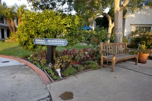 Santa Barbara Commercial Landscape Management