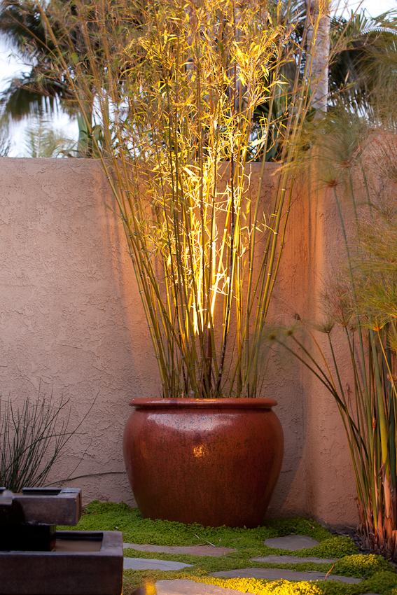 Santa Barbara landscape lighting