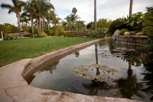 Santa Barbara landcaping - Pond