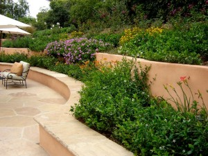 Santa Barbara landscape ideas