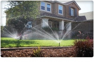 Watering and lawn care