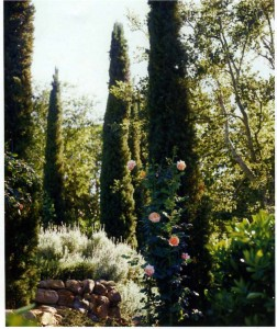 English Garden in Santa Barbara