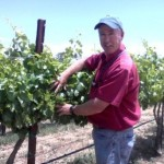 Planting a California Vineyard